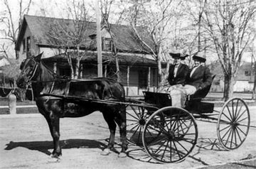 carriage horse 2 1870's